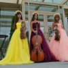 Violin Group DOLLS 3