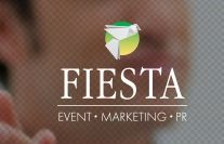 FST consulting